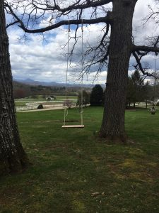Tree swing on The Horse Shoe Farm made of wood from The Lodges at Eagles Nest