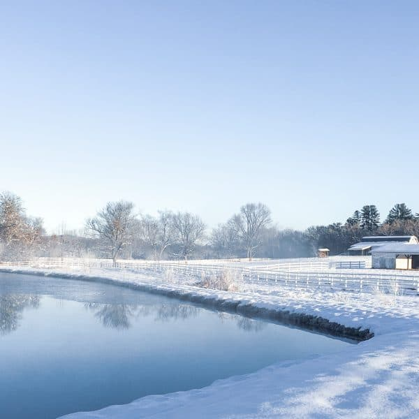 Holiday tradtions at The Horse Shoe Farm